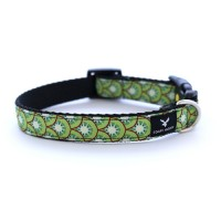 Soapy Moose Dog Collar Kiwi(Medium)